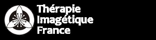 TI-France